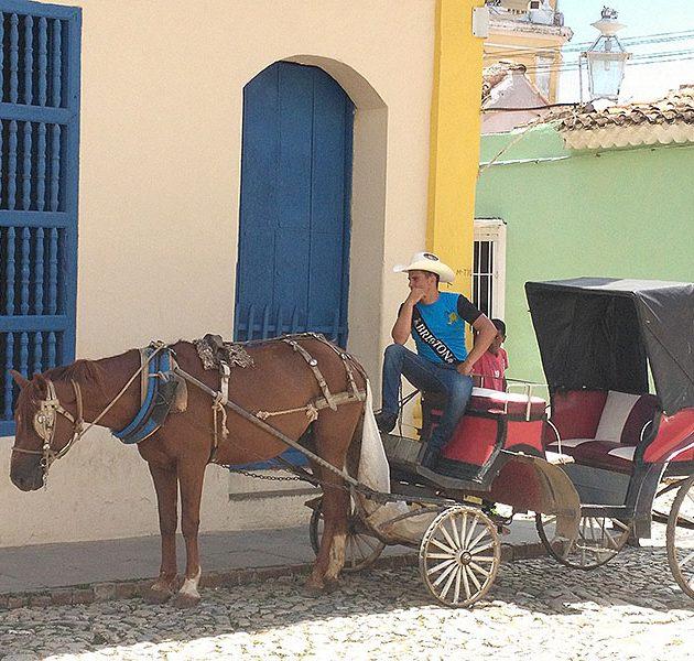 horse-carriage-trinidad-630×600
